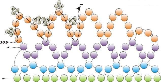 Схема плетения огалалы